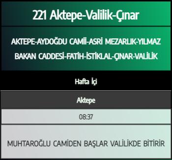 221 - Aktepe-Valilik-Çınar 1